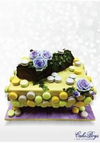 Macron Cake