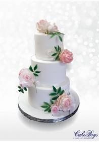 Cake-Boys-Wedding-Bliss