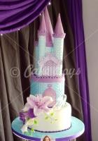 dsc00737-cake