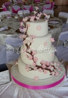 dsc00750-cake