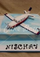 airplane-cake