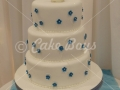 dsc00647-cake